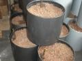 Plantenbakken hydrocultuur-9